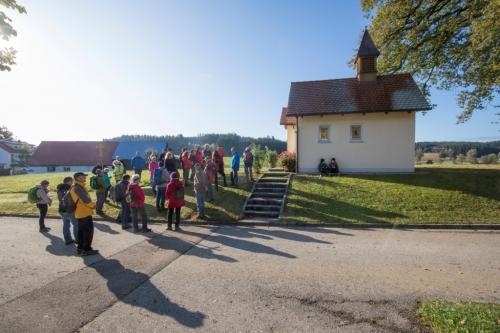 Altenm-Violau 2019 09