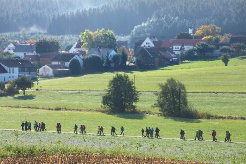 Altenm-Violau 2019 15